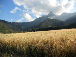 Que la montagne est douce…